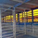 Продам двухэтажный скотовоз SCHMITZ