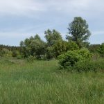 Продажа зем участка 182,65 сот. в с. Залесье,